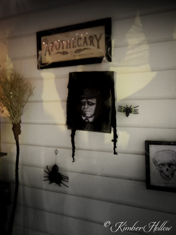Welcome to Kimber Hollow's Apothecary